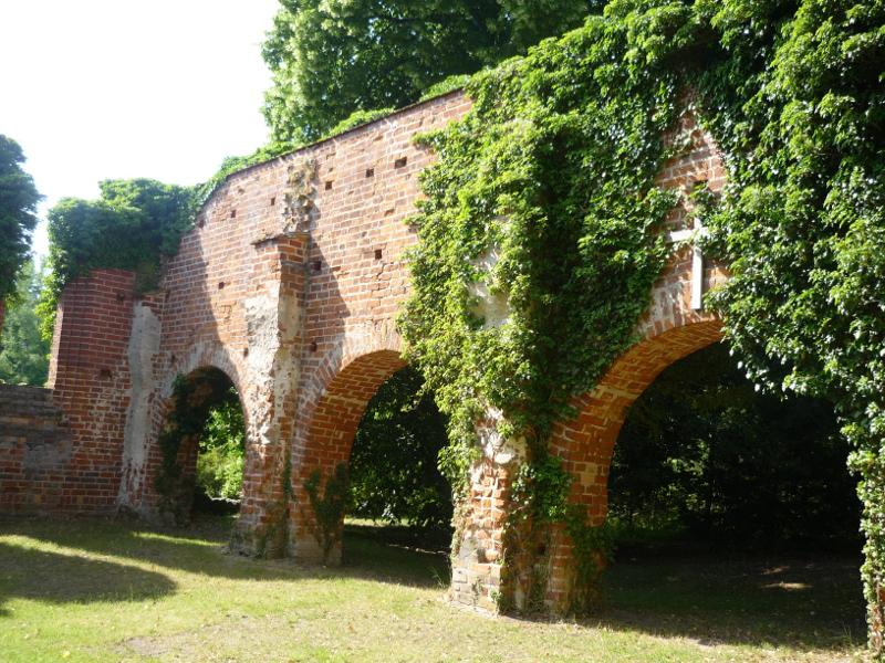 Die Klosterruine aus einem anderen Winkel. Einige Fenster- und Torbögen sind noch erkennbar und überwuchert von Ranken.