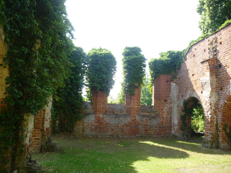 Die Klosterruine. Einige Fenster- und Torbögen sind noch erkennbar und überwuchert von Ranken.
