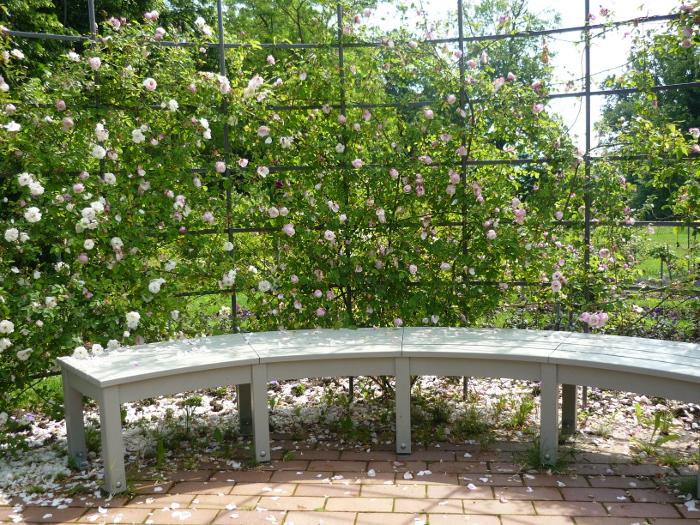 Der Pavillon von innen mit weißen Bänken und blühenden Rosen.