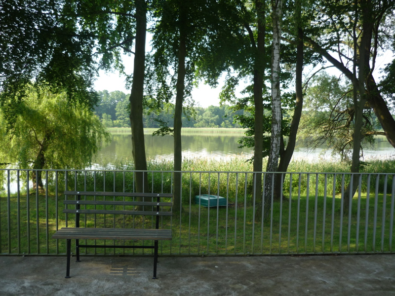 A look at the lake from the entrance