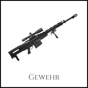 Bild eines Gewehrs mit entsprechender Unterschrift